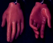 Body Parts HAND FINGERS DANGLE EARRINGS - Creepy Halloween Realistic 3-D Freaky Gothic Costume Jewelry -AA