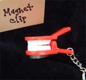 FALSE TEETH NOTE CLIP KEYCHAIN with MAGNET - Funky Dentures Gag - Great gift for Dentist, Dental Hygienist, Oral Surgeon, Orthodontist, Retirement, Over-the-Hill !!!