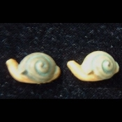 SNAILS SLUGS BUTTON STUD EARRINGS - Slow Aquatic Fish LAZY Mollusk Jewelry