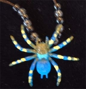 TARANTULA SPIDER PENDANT NECKLACE-Funky Novelty Gothic Jewelry-B